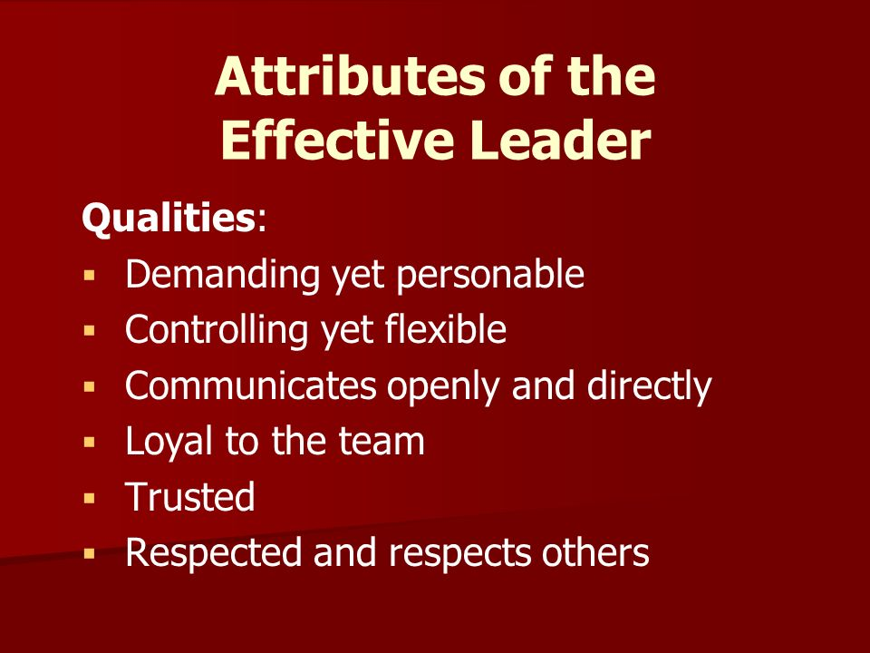   Brings the team together   Sets the vision of the team Roles of the Effective Leader