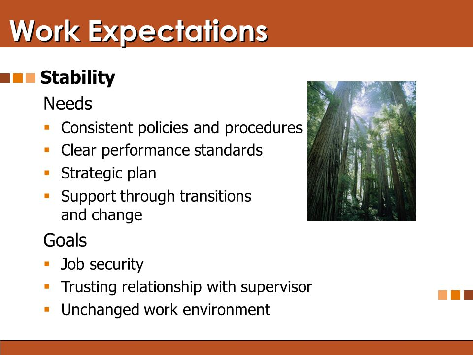 Blended Learning: Finding the Right Mix Work Expectations Stability Needs  Consistent policies and procedures  Clear performance standards  Strategic plan  Support through transitions and change Goals  Job security  Trusting relationship with supervisor  Unchanged work environment