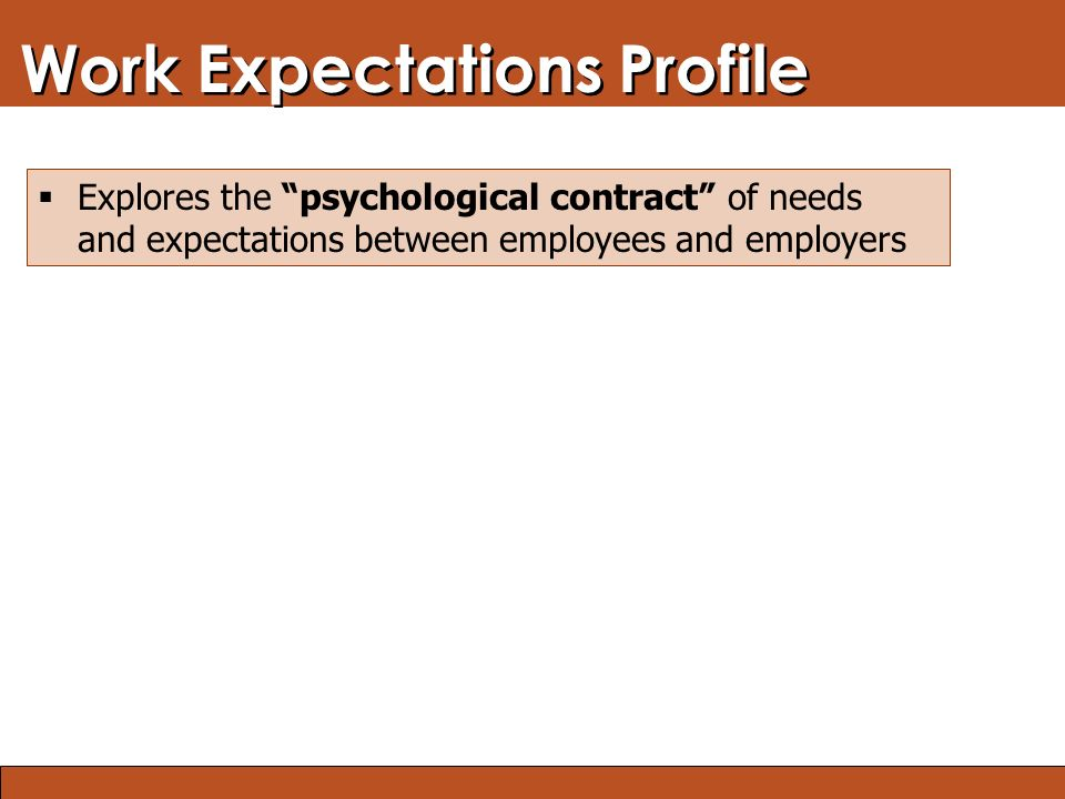 Blended Learning: Finding the Right Mix Work Expectations Profile  Explores the psychological contract of needs and expectations between employees and employers