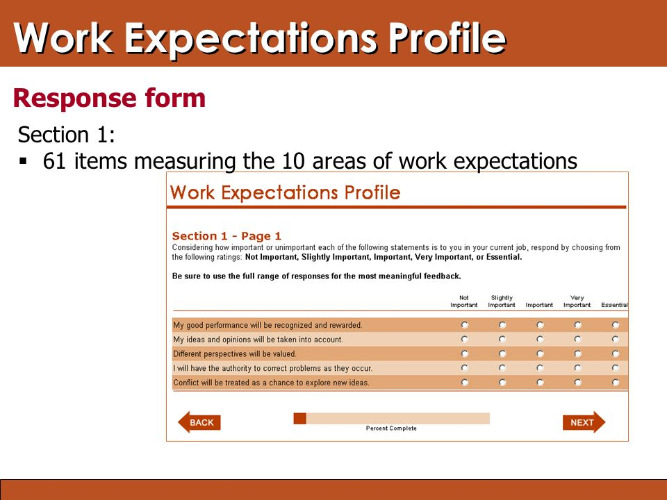Blended Learning: Finding the Right Mix Work Expectations Profile Response form Section 1:  61 items measuring the 10 areas of work expectations