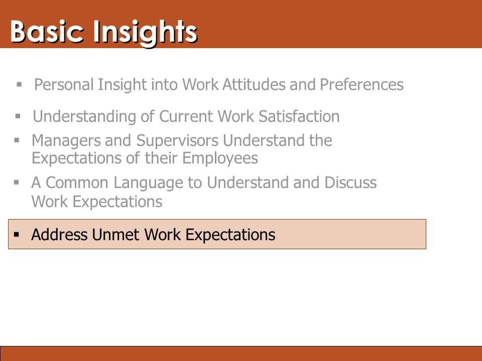 Blended Learning: Finding the Right Mix Basic Insights  Address Unmet Work Expectations  A Common Language to Understand and Discuss Work Expectations  Managers and Supervisors Understand the Expectations of their Employees  Understanding of Current Work Satisfaction  Personal Insight into Work Attitudes and Preferences