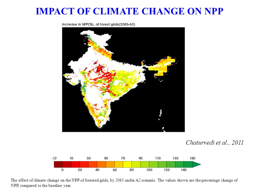 The effect of climate change on the NPP of forested grids, by 2085 under A2 scenario.
