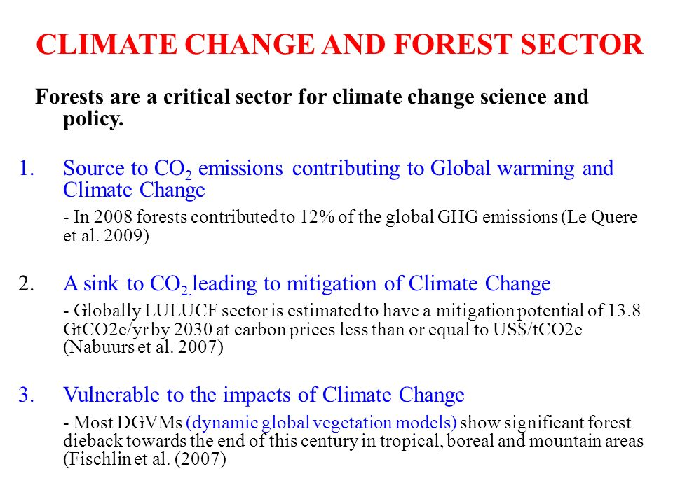 CLIMATE CHANGE AND FOREST SECTOR Forests are a critical sector for climate change science and policy.