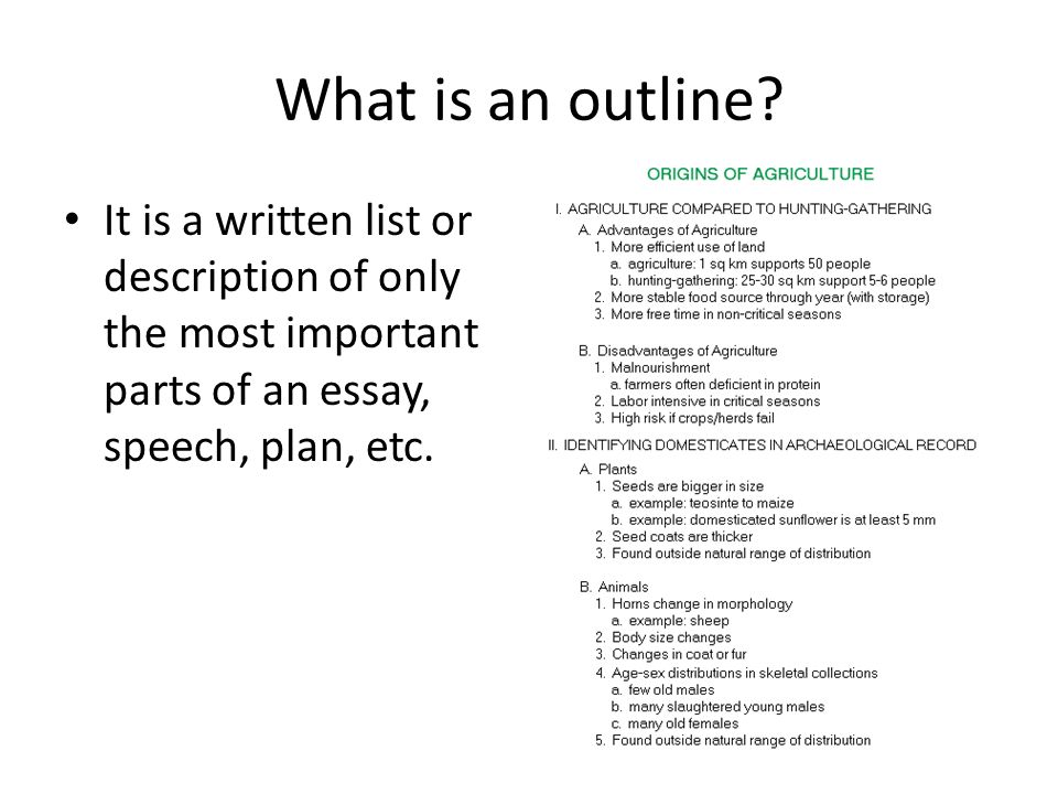 outline and essay writing what is an outline it is a written  2 what