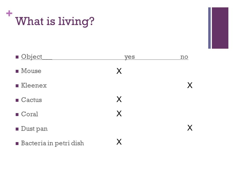 How many of the 'Characteristics of Life' must be present for something to be considered living?