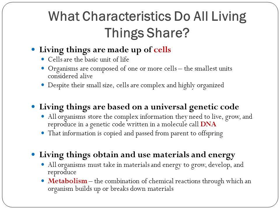 What Characteristics Do All Living Things Share.