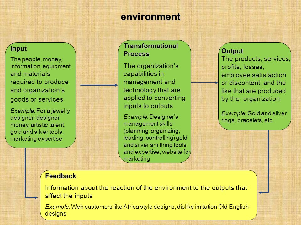 environmentInput The people, money, information, equipment and materials required to produce and organization's goods or services Example: For a jewel
