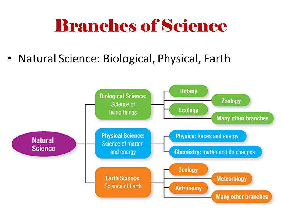the three branches of natural science Earth science in maine search this site chemical oceanography studies the natural elements in ocean water what are three major branches of earth science 2.