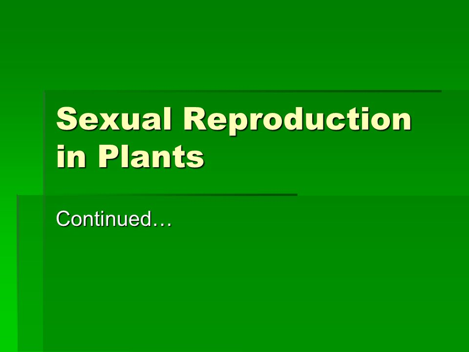Sexual Reproduction in Plants Continued…