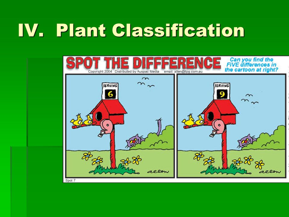 IV. Plant Classification