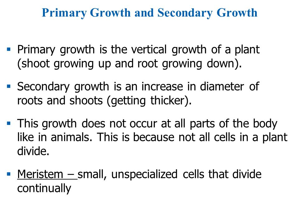 Primary Growth and Secondary Growth  Primary growth is the vertical growth of a plant (shoot growing up and root growing down).