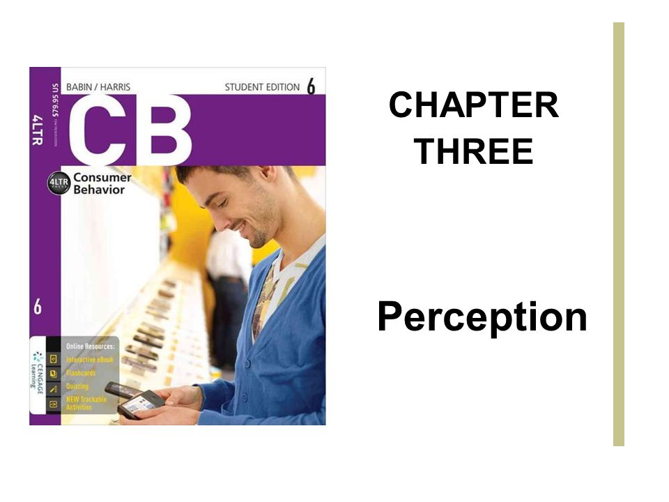 Perception CHAPTER THREE