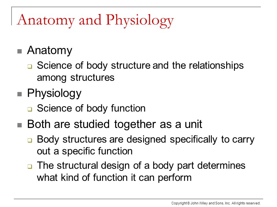 Schön Why Are Anatomy And Physiology Studied Together Fotos ...