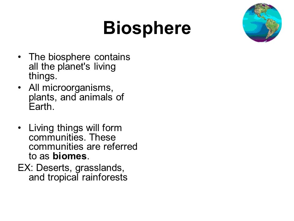 Biosphere The biosphere contains all the planet s living things.