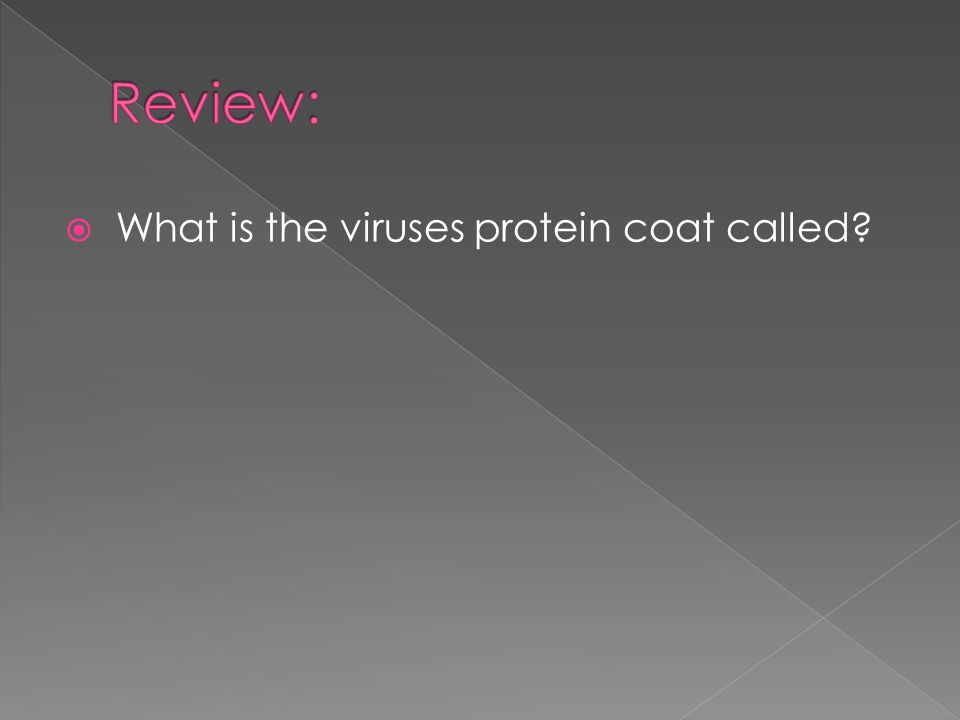  What is the viruses protein coat called