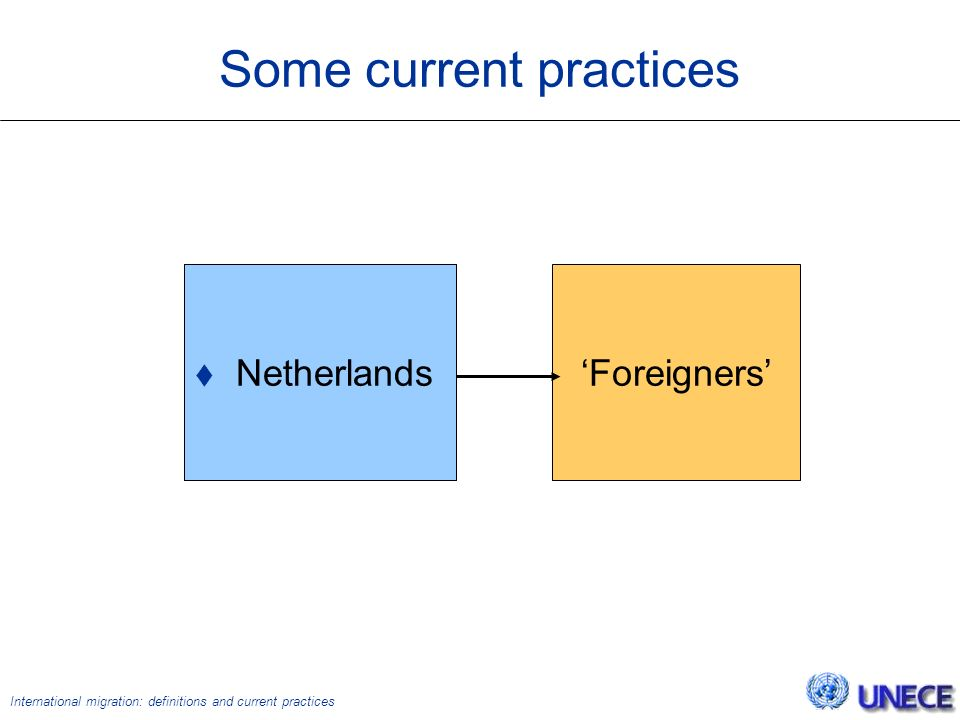 International migration: definitions and current practices Some current practices  Netherlands 'Foreigners'  Netherlands