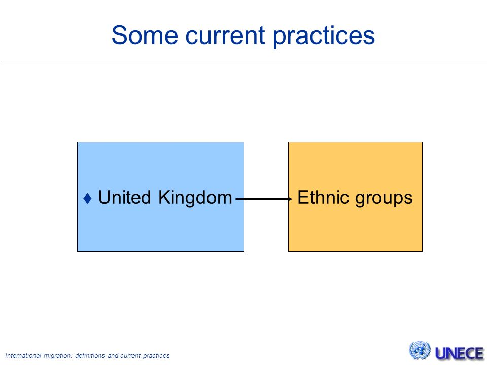 International migration: definitions and current practices Some current practices  United Kingdom Ethnic groups