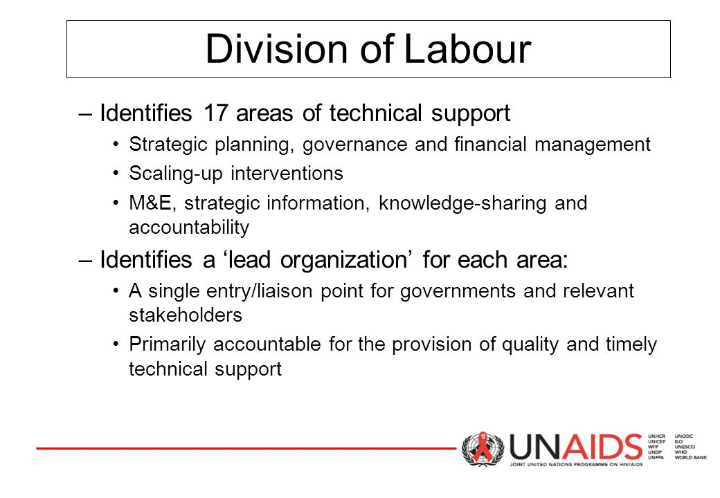 Division of Labour –Identifies 17 areas of technical support Strategic planning, governance and financial management Scaling-up interventions M&E, strategic information, knowledge-sharing and accountability –Identifies a 'lead organization' for each area: A single entry/liaison point for governments and relevant stakeholders Primarily accountable for the provision of quality and timely technical support