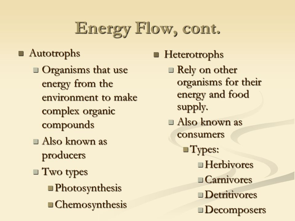 Energy Flow, cont.
