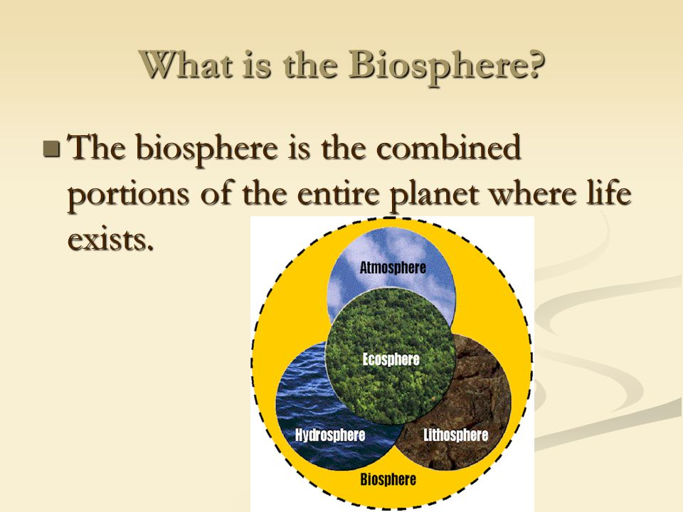 What is the Biosphere.