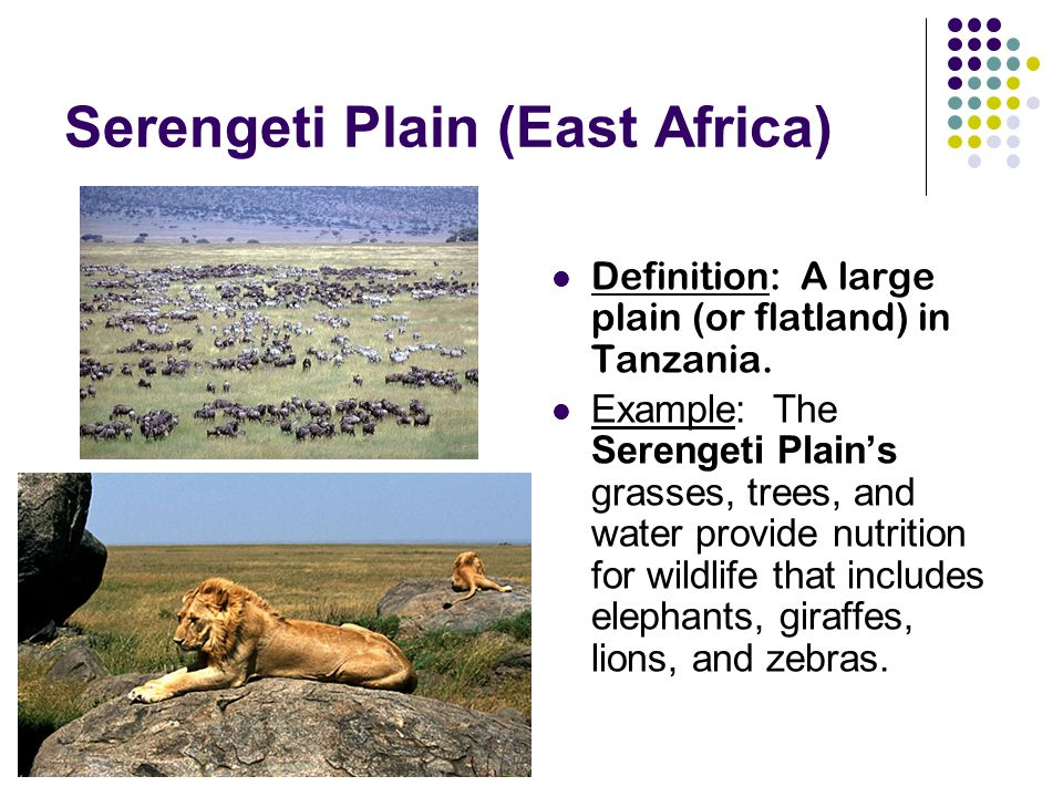 Serengeti Plain (East Africa) Definition: A large plain (or flatland) in Tanzania.