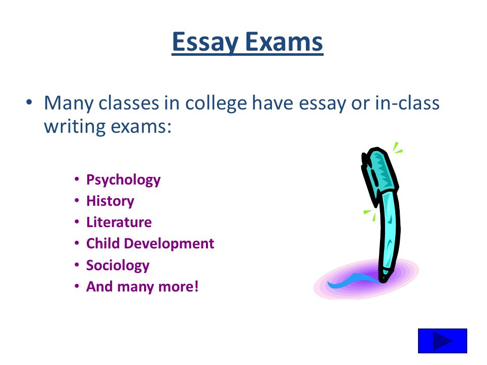 outline of argumentative essay example