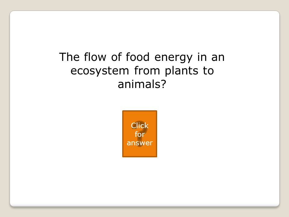 The flow of food energy in an ecosystem from plants to animals Click for answer