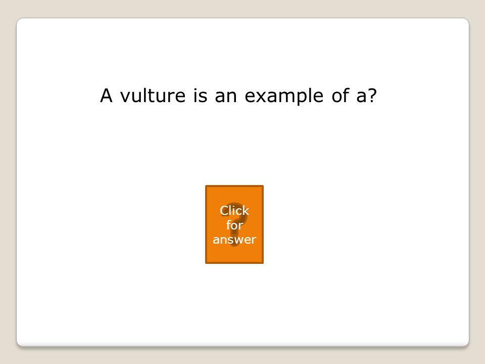 A vulture is an example of a Click for answer