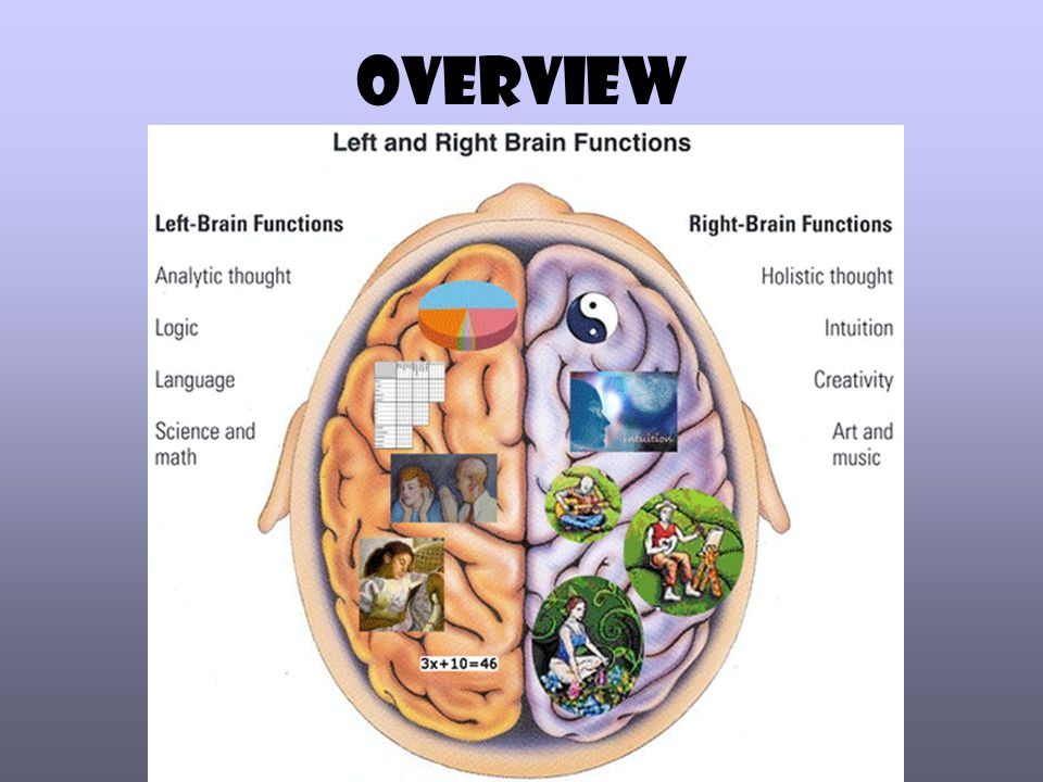 concept of lateralisation of function in the brain Learn about the concept of left brain and right brain distinction or split brain explore how neuroscientists are advancing our understanding of lateralization.
