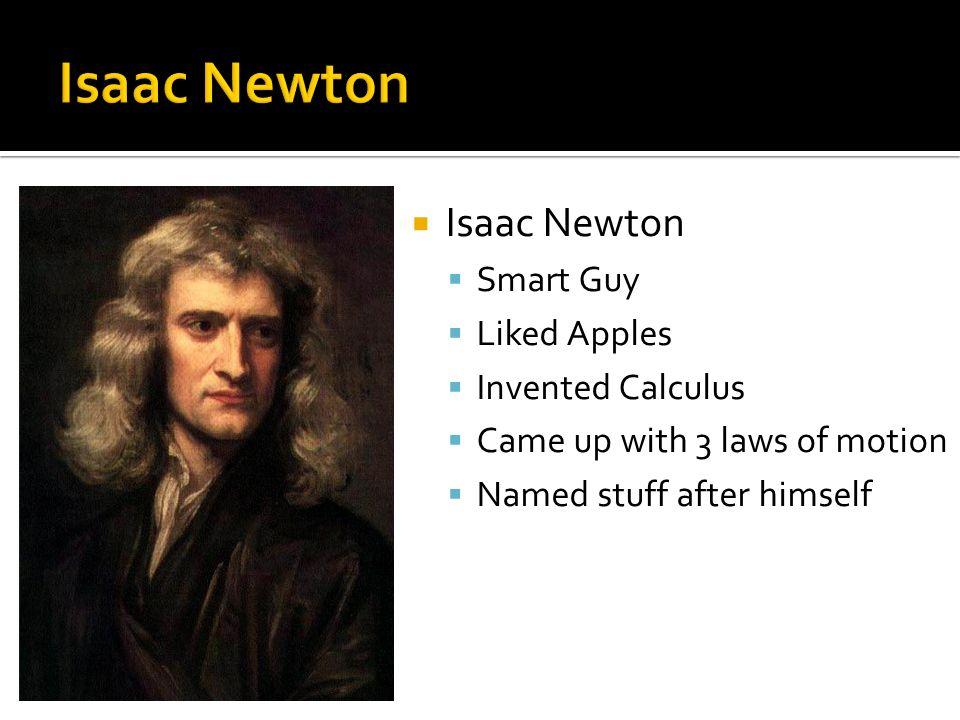 issac newtom essay