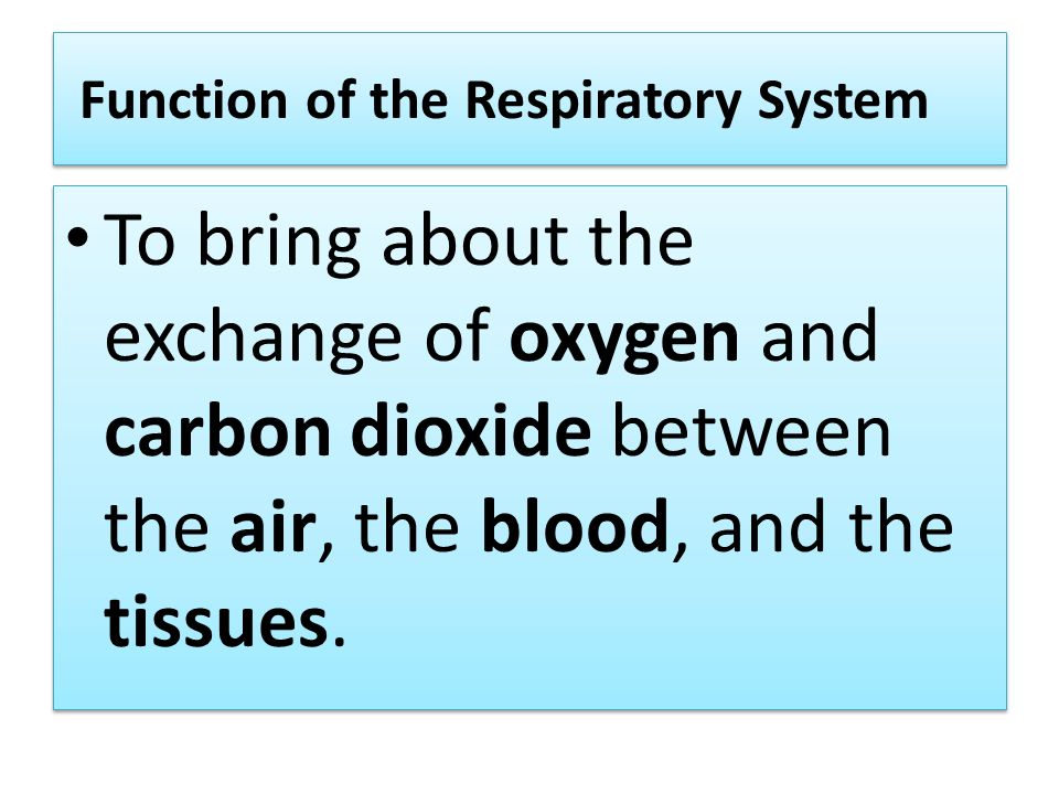 Function of the Respiratory System To bring about the exchange of oxygen and carbon dioxide between the air, the blood, and the tissues.