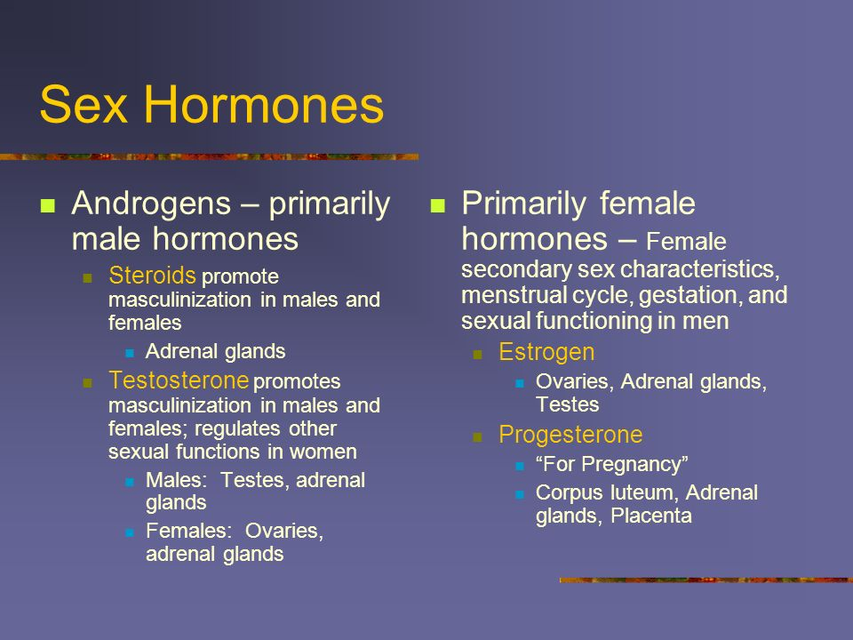 Sex Hormones Androgens – primarily male hormones Steroids promote masculinization in males and females Adrenal glands Testosterone promotes masculiniz