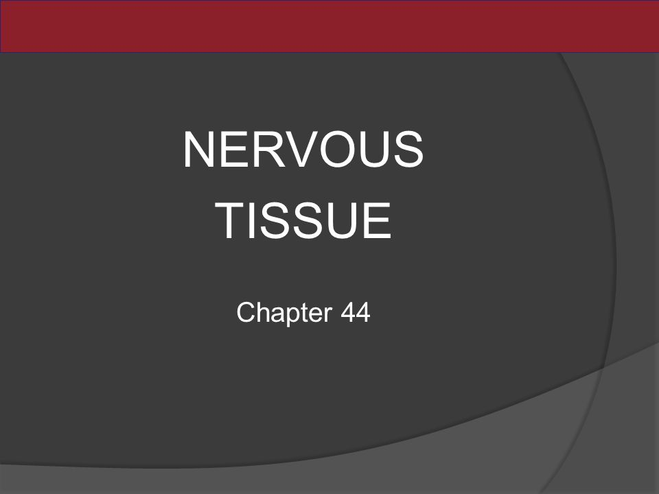NERVOUS TISSUE Chapter 44