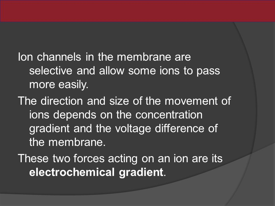 Ion channels in the membrane are selective and allow some ions to pass more easily.