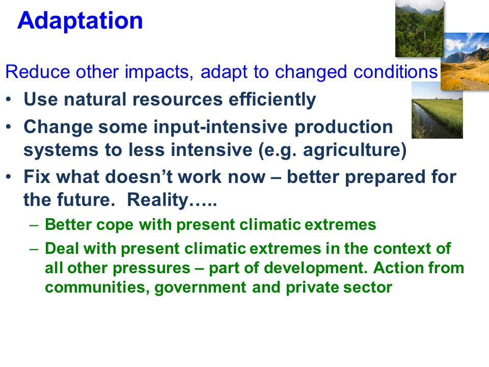 Adaptation Reduce other impacts, adapt to changed conditions Use natural resources efficiently Change some input-intensive production systems to less intensive (e.g.