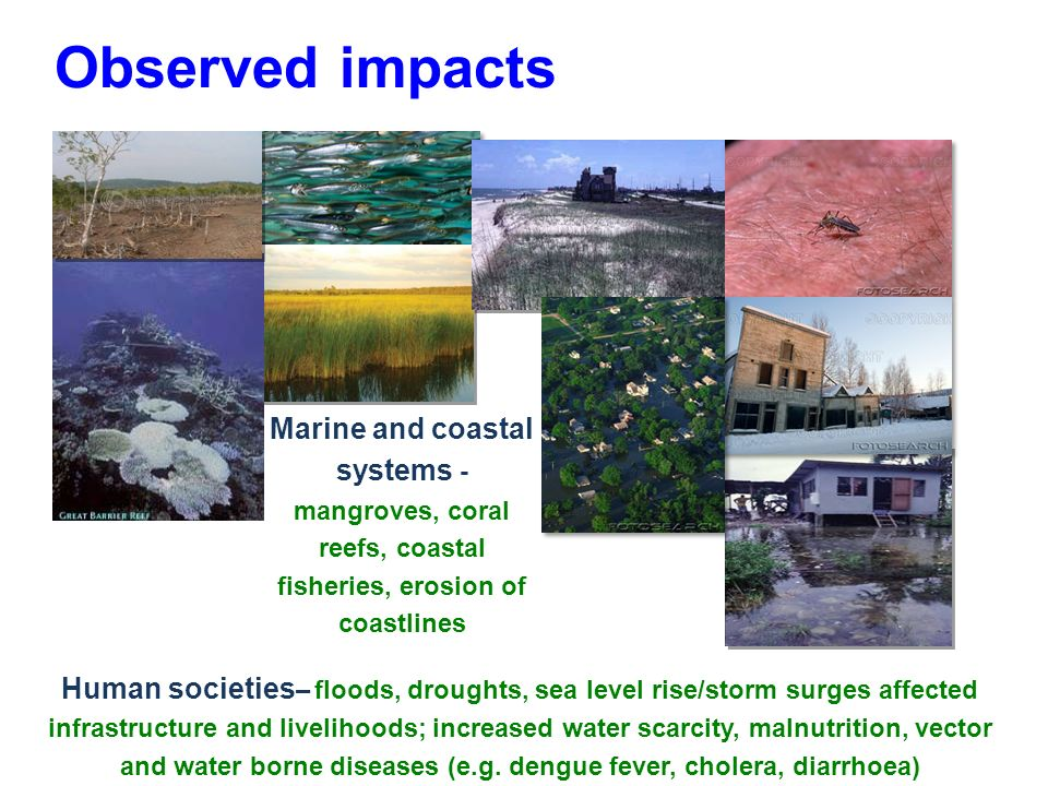 Observed impacts Marine and coastal systems - mangroves, coral reefs, coastal fisheries, erosion of coastlines Human societies – floods, droughts, sea level rise/storm surges affected infrastructure and livelihoods; increased water scarcity, malnutrition, vector and water borne diseases (e.g.
