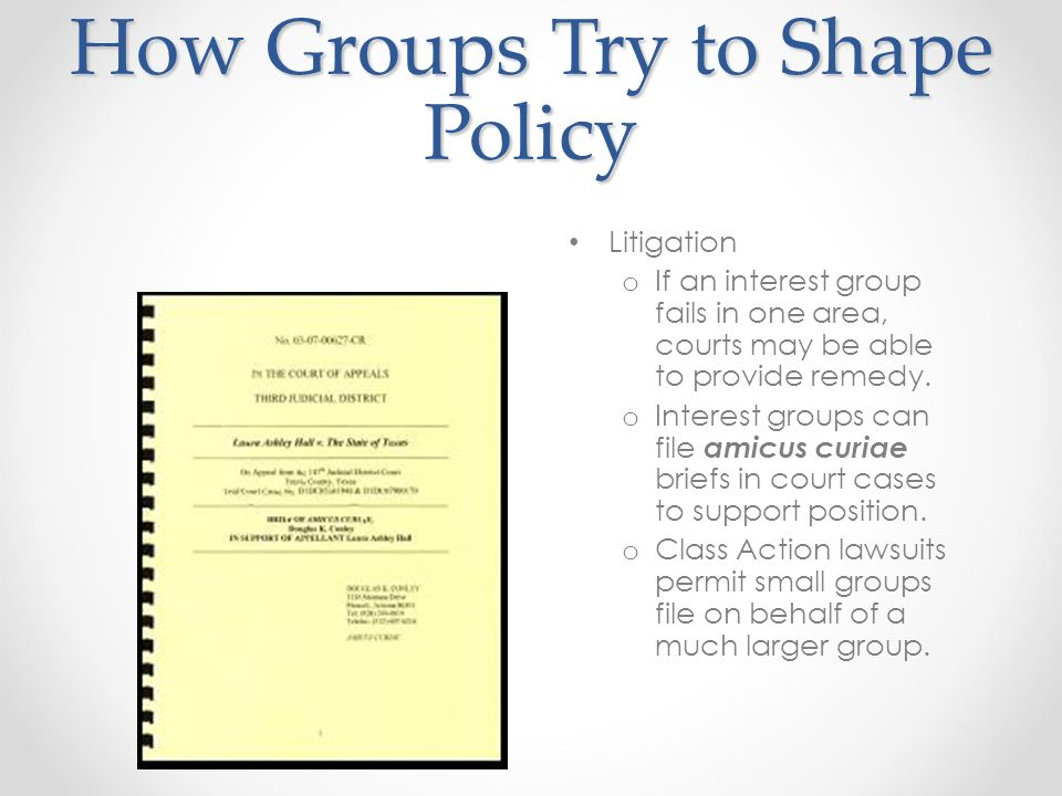 How Groups Try to Shape Policy Litigation o If an interest group fails in one area, courts may be able to provide remedy.