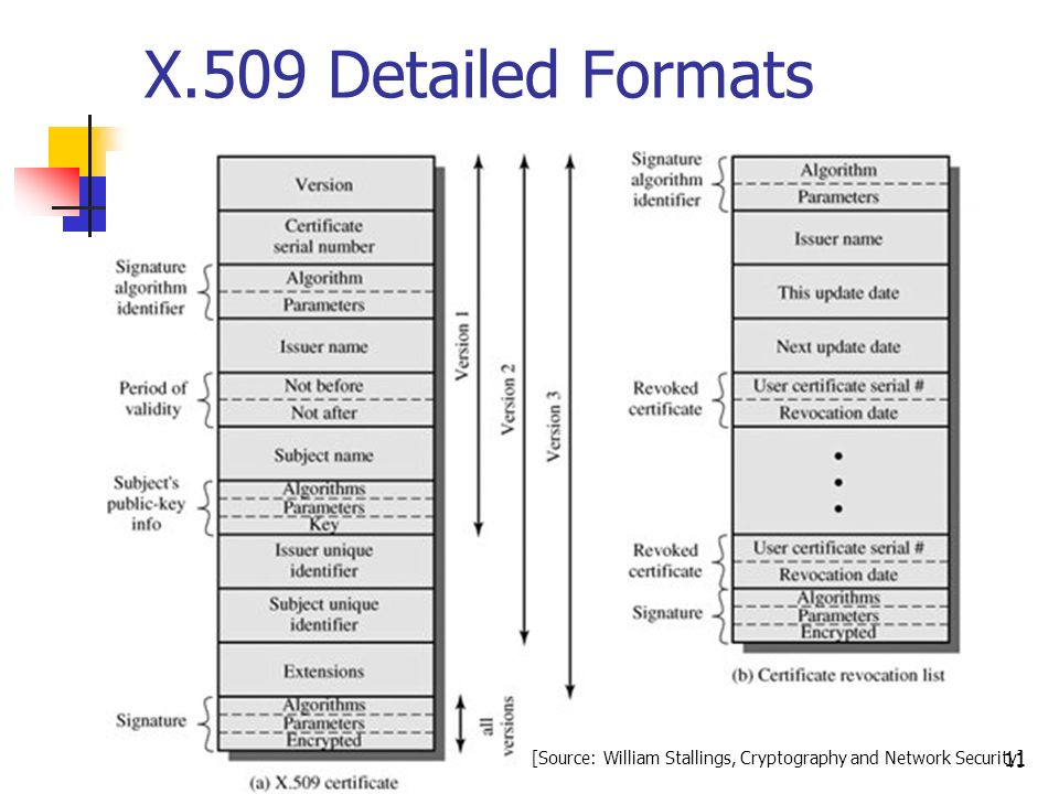 X 509 Certificate Format Ibovnathandedecker