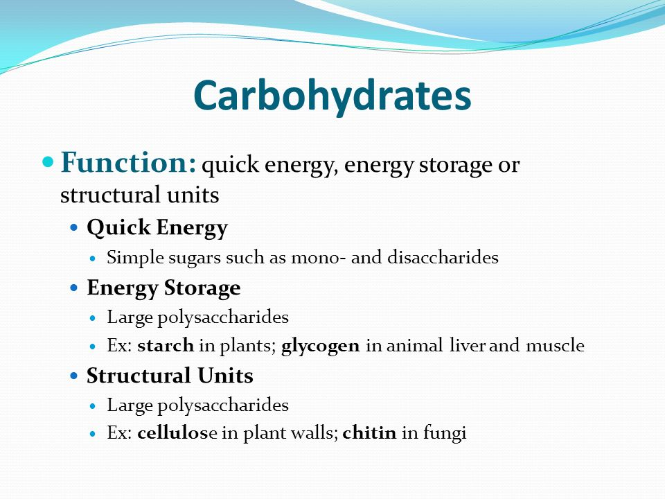 14 Carbohydrates Function Quick Energy Storage