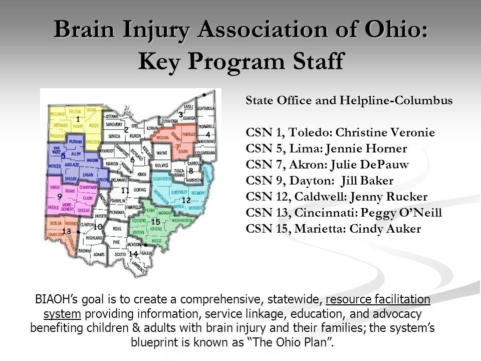 Community capacity building building and strengthening bridges ohio 7 brain injury association of ohio key malvernweather Images