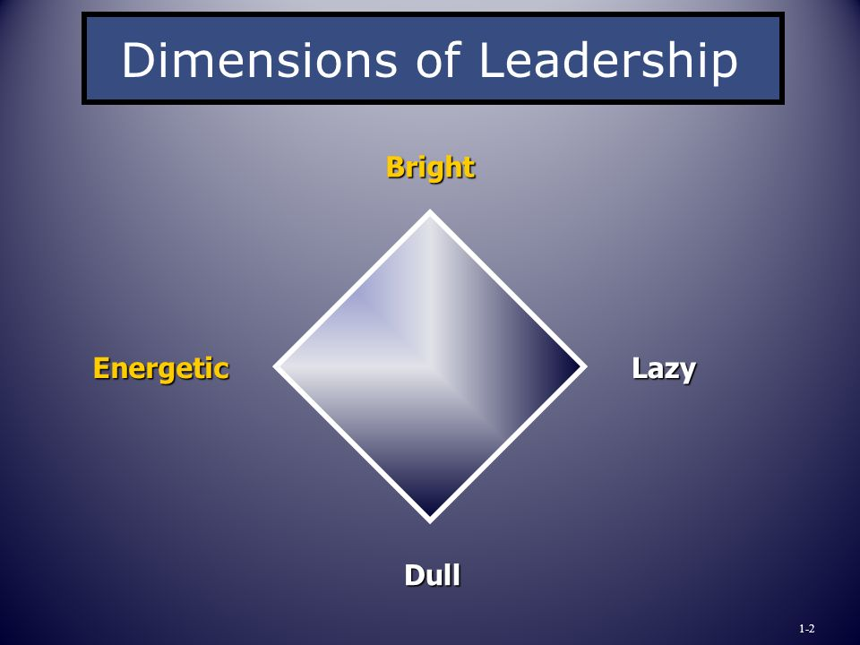 Bright Energetic Dimensions of Leadership Lazy Dull 1-2