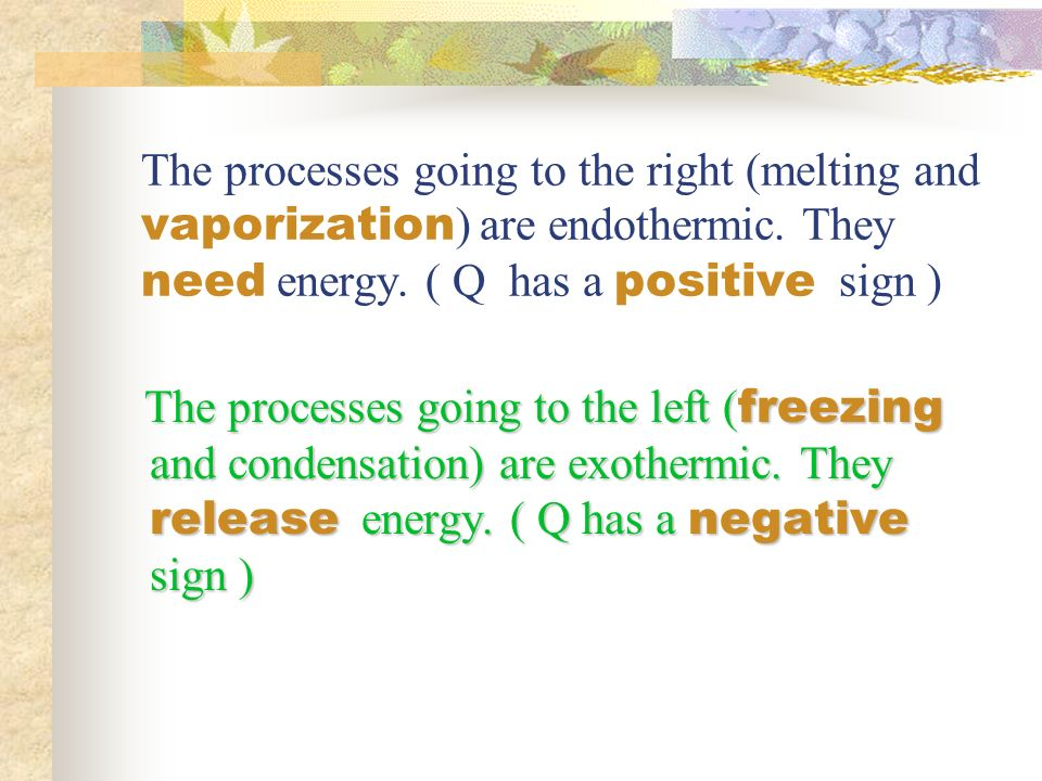 The processes going to the right (melting and vaporization ) are endothermic.