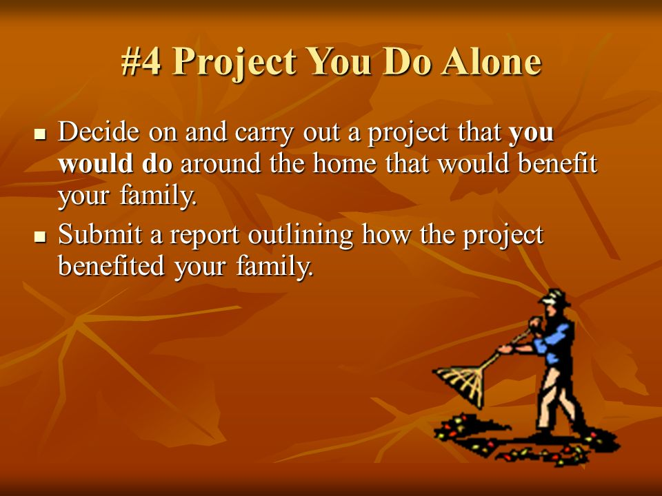 #4 Project You Do Alone Decide on and carry out a project that you would do around the home that would benefit your family.