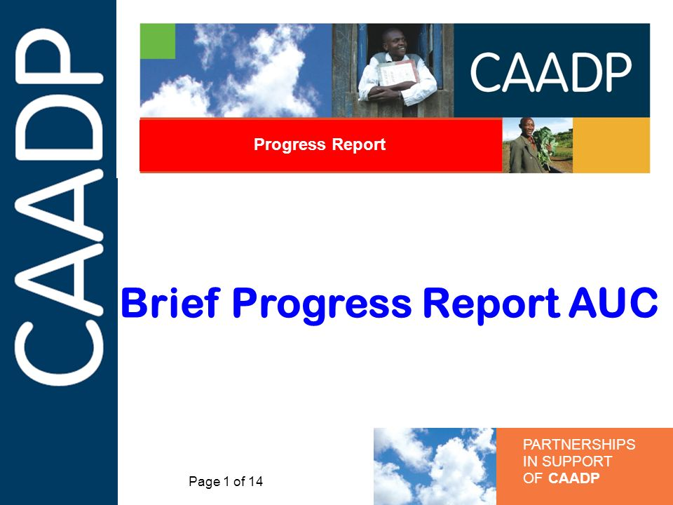 PARTNERSHIPS IN SUPPORT OF CAADP Progress Report Brief Progress Report AUC Page 1 of 14