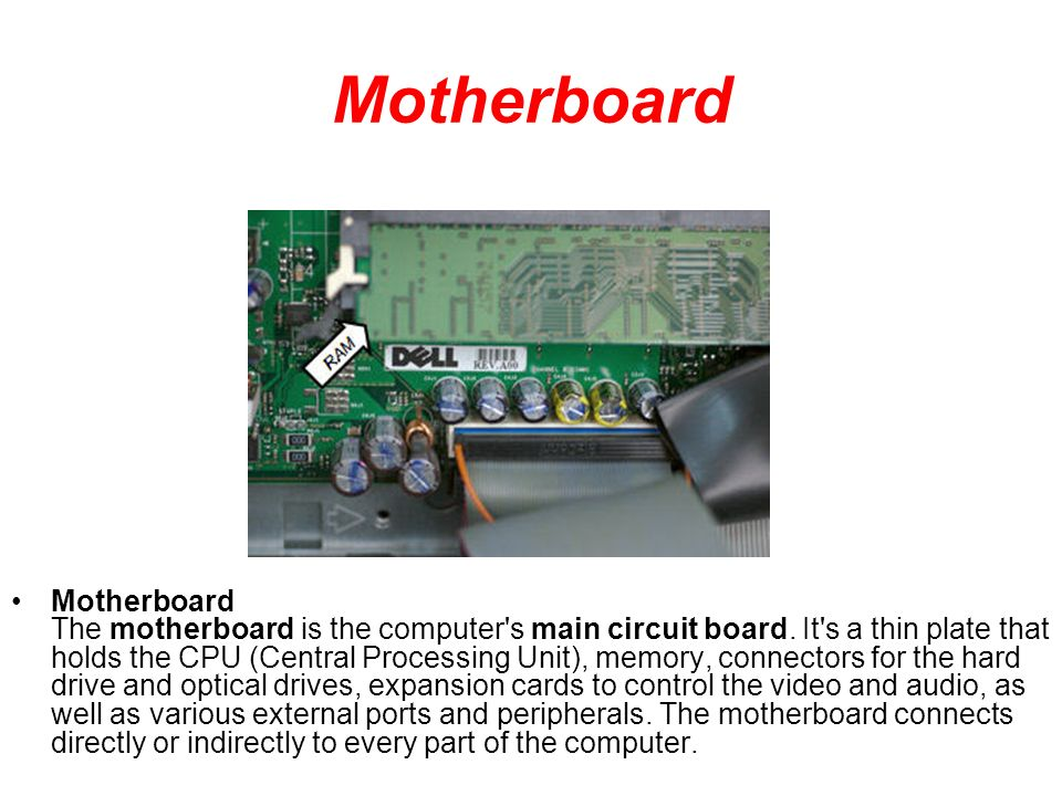 the motherboard is the main circuit