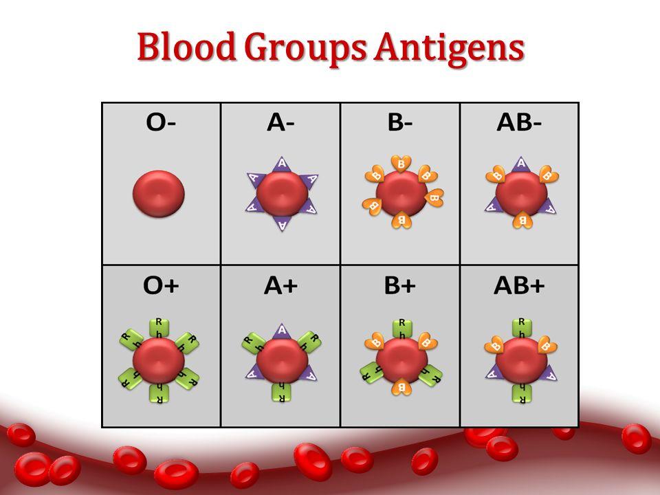 antigene auf erythrozyten