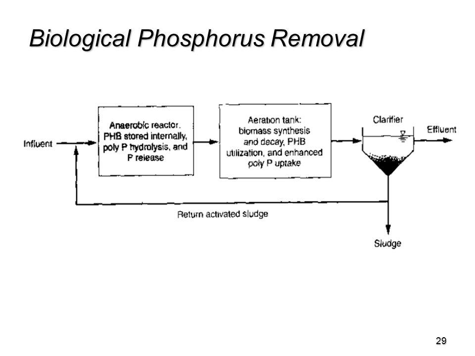 29 Biological Phosphorus Removal