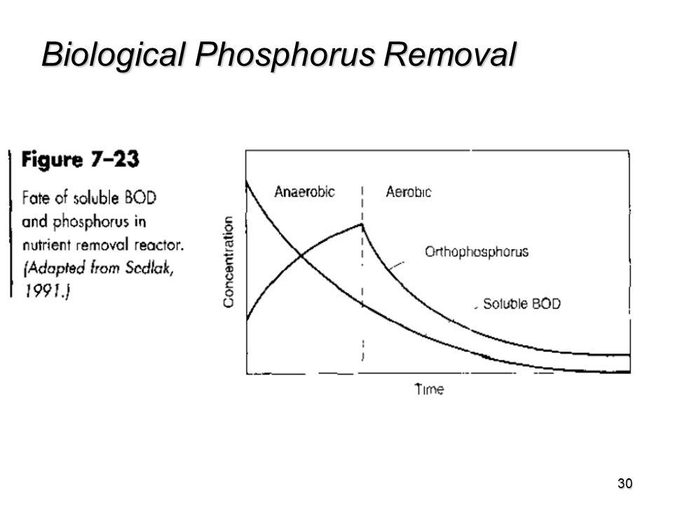 30 Biological Phosphorus Removal