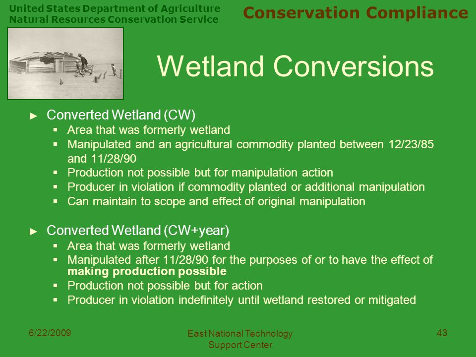 United States Department of Agriculture Natural Resources Conservation Service Conservation Compliance 6/22/2009 East National Technology Support Center 43 Wetland Conversions ► Converted Wetland (CW)  Area that was formerly wetland  Manipulated and an agricultural commodity planted between 12/23/85 and 11/28/90  Production not possible but for manipulation action  Producer in violation if commodity planted or additional manipulation  Can maintain to scope and effect of original manipulation ► Converted Wetland (CW+year)  Area that was formerly wetland  Manipulated after 11/28/90 for the purposes of or to have the effect of making production possible  Production not possible but for action  Producer in violation indefinitely until wetland restored or mitigated