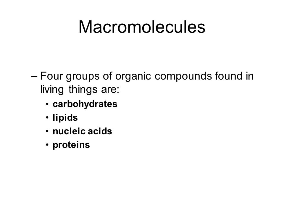 Macromolecules –Four groups of organic compounds found in living things are: carbohydrates lipids nucleic acids proteins